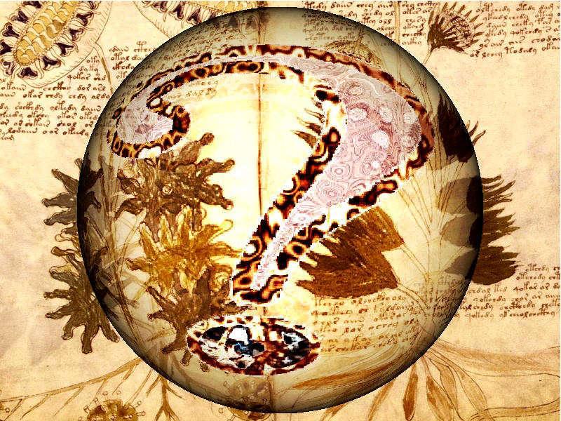 El Manuscrito de Voynich:El enigma más difícil de resolver de todos los tiempos