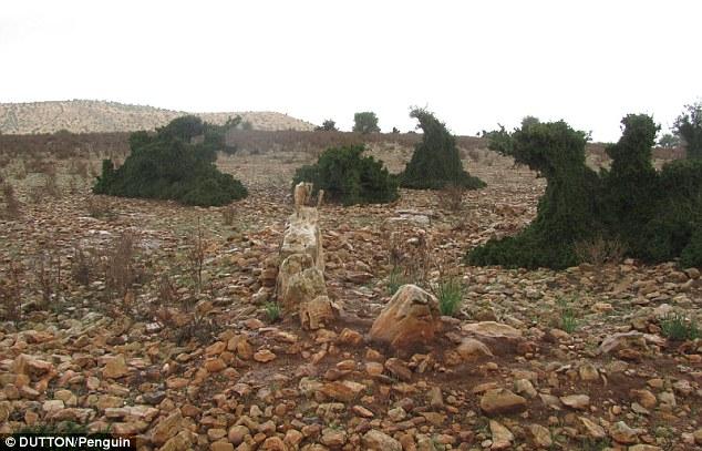 Investigador dice haber encontrado la atlantida en Marruecos