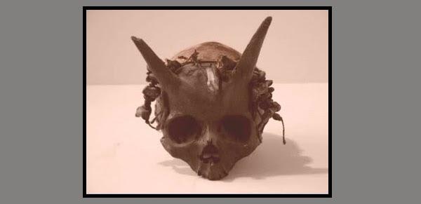Cráneos misteriosos en la historia de la humanidad