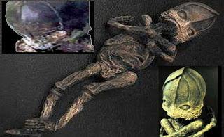 Resurge el caso del extraterrestre momificado encontrado en Rusia