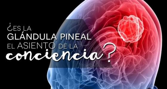 """Neurociencia de la glándula pineal: los misterios del """"tercer ojo"""