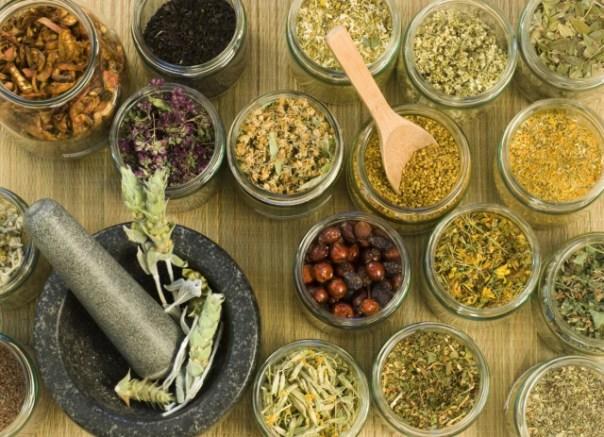 15 Plantas naturales que pueden acabar con el negocio de las farmacéuticas
