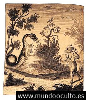 El Tatzelwurm