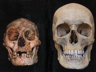Sobreviven Animales Que Creemos Extintos?
