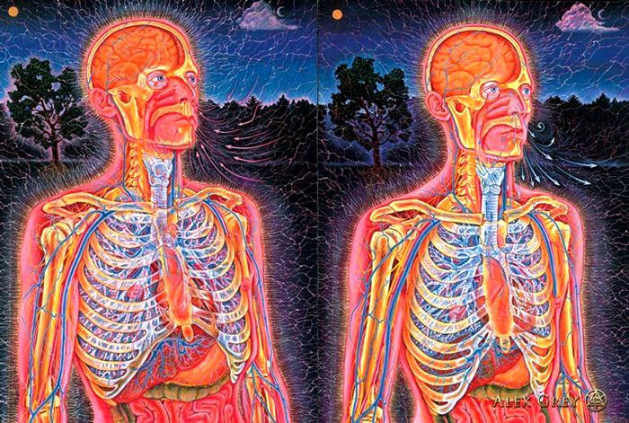 Pranayama: Técnicas de respiración – Aprenda a controlar sus estados mentales y ser más feliz