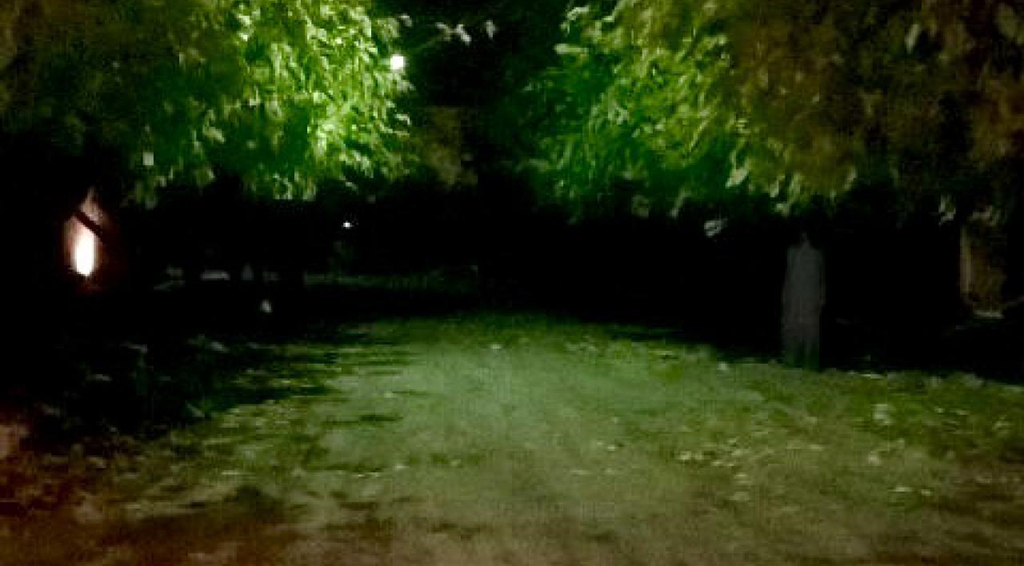 Revuelo en Mendoza por la foto de una mujer fantasma.