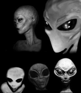 ANTROPOIDES: Tipos de E.Ts descubiertos
