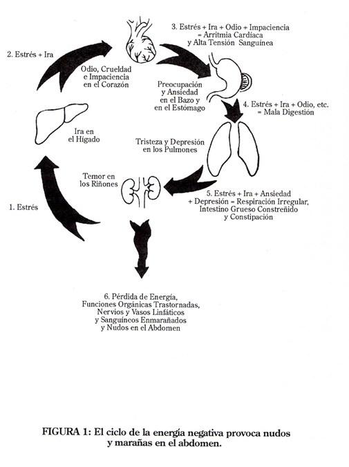 El Tao, la Salud y la Energía Humana Chi Nen Tsang.