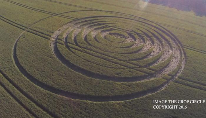 Aparece un nuevo Crop Circle en Fulley Wood