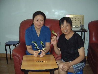 Sun Chu Lin induce a semillas a brotar y crecer en 20 minutos.