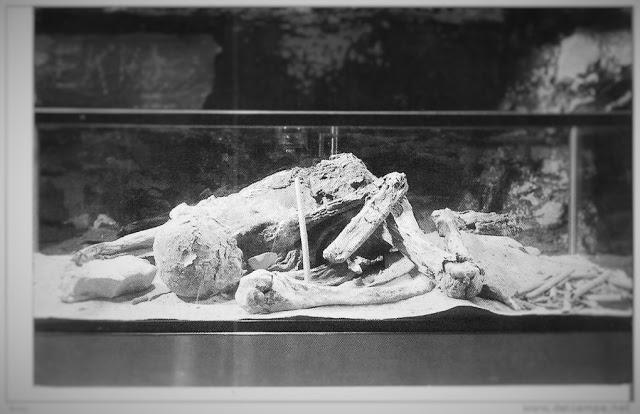 La misteriosa momia egipcia hallada en América del Norte