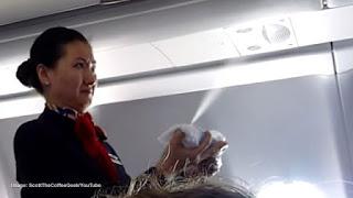 Gobierno Aconseja Que Las Lineas Aereas Rocien Pesticidas Sobre Los pasajeros
