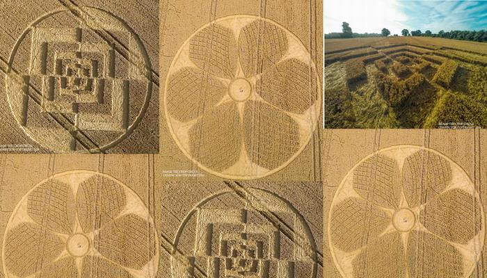 Impresionantes Crop Circles aparecen en Reino Unido 3 y 4 de agosto 2016