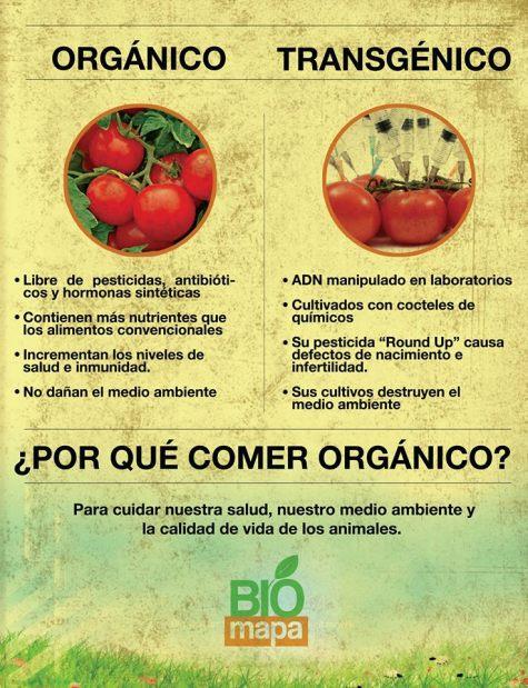 Cómo las empresas que producen alimentos transgénicos han dependido siempre del engaño