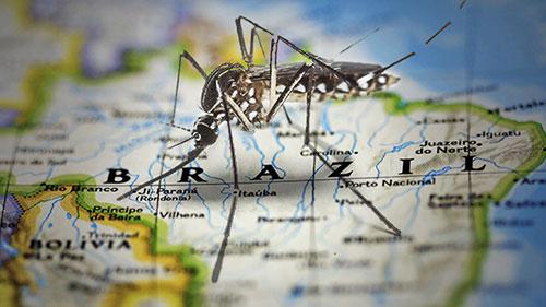 El engaño del Zika
