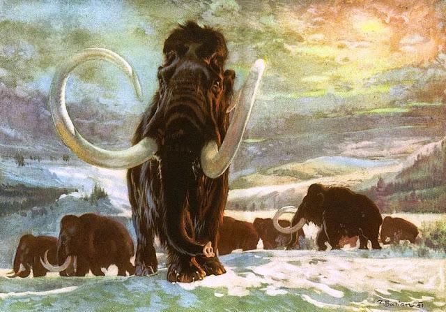 Se busca hábitat para la clonación de mamuts