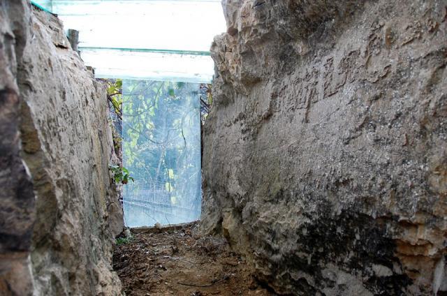 Los científicos chinos están sorprendidos de encontrar revelador escrito en una piedra de más de 270 millones de años