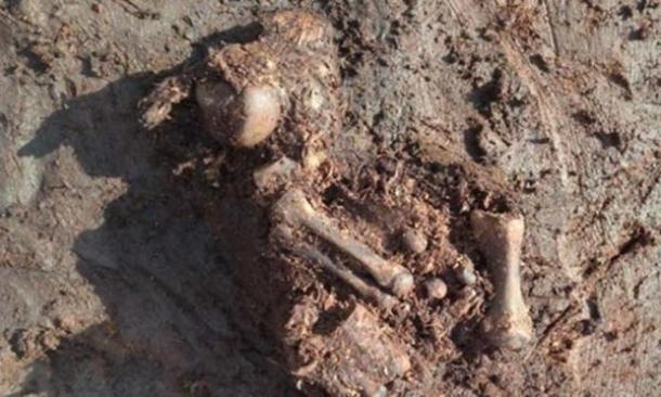 en irlanda se encuentra un cuerpo con probalidad de ser un sacrificio de la edad de hierro