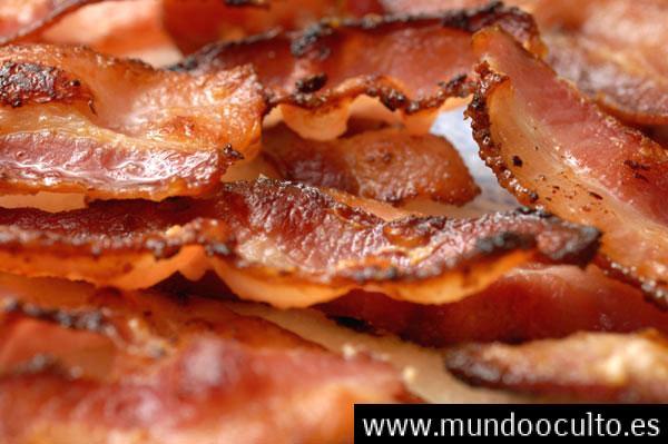 Porque no comer carne de cerdo