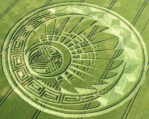 Grandes misterios en los campos de cultivo en EE.UU ¡¡