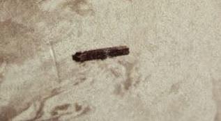 fotoovnimC3A1santiguo copia - La Fotografia mas antigua tomada en 1870 de un Ovni?