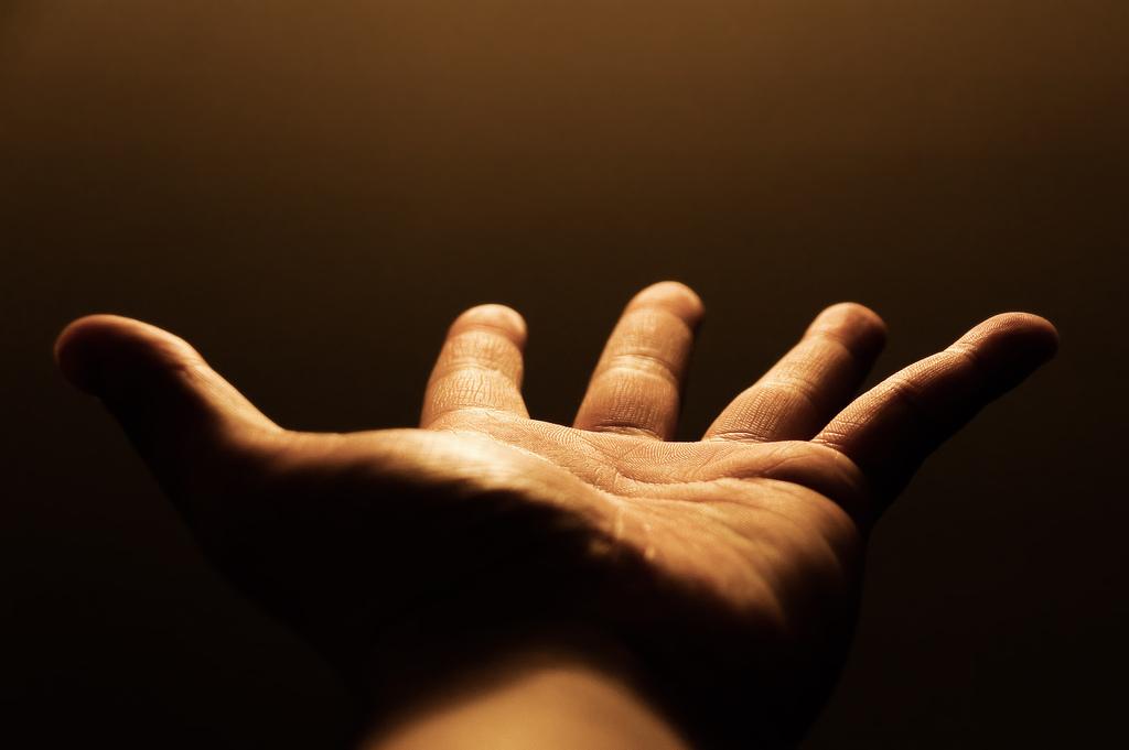¿Por qué las manos tienen cinco dedos y no siete?