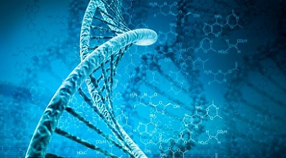 «WIT» : Encontramos un mensaje secreto de Dios en el ADN humano escrito en arameo antiguo.