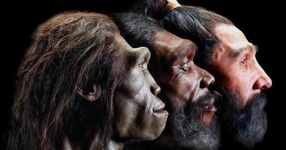 La teoría de las tres especies de humanos