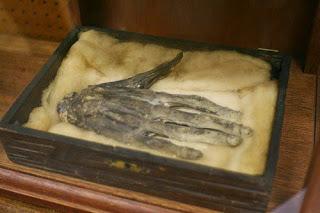 La Mano del Muerto o La Mano de Gloria. La historia de unos de los hechizos mas temidos de la Edad Media.