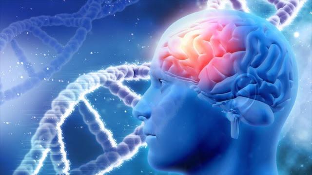 Crean estimulador magnético que puede borrar y activar recuerdos