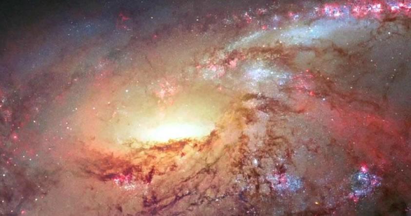 Una controversial y nueva hipótesis sobre la gravedad ha pasado su primera prueba