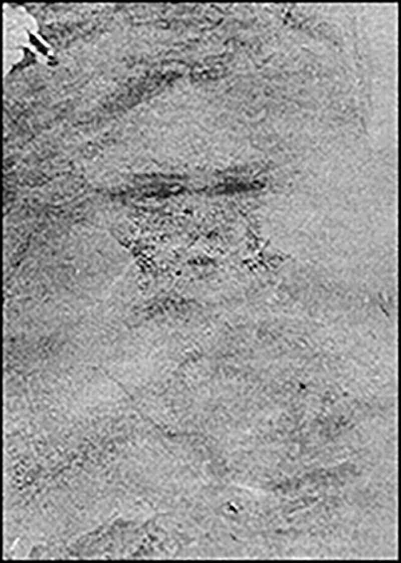El misterio de las caras de Belmez (La casa de las caras)