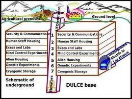 Investigacion genetica en Bases Subterraneas