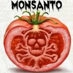 Las 10 mentiras que Monsanto quiere que creamos