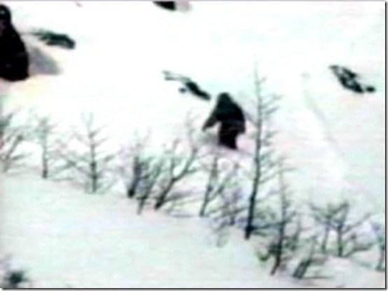 Los Yetis existen y viven en Rusia