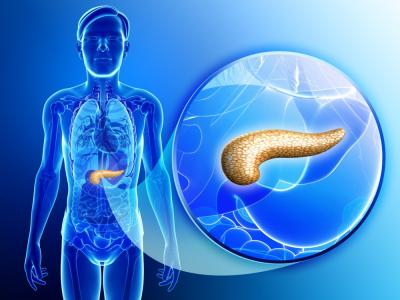 El páncreas artificial para diabéticos llegaría en un año