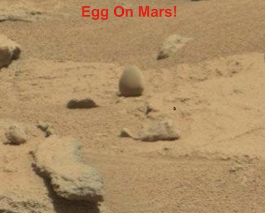 Huevo fosilizado Planeta Marte
