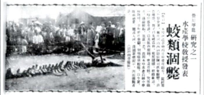 1492760403652 128249481 - ¿Existieron los dragones? En China tienen EVIDENCIAS definitivas.