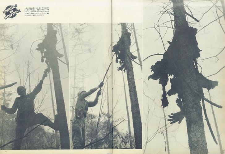 Bosques malditos del mundo