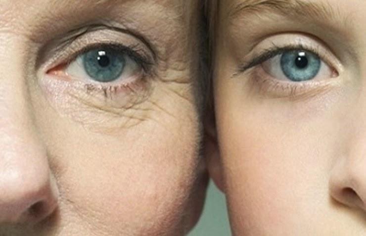 Exito en el experimento de anti-envejecimiento.