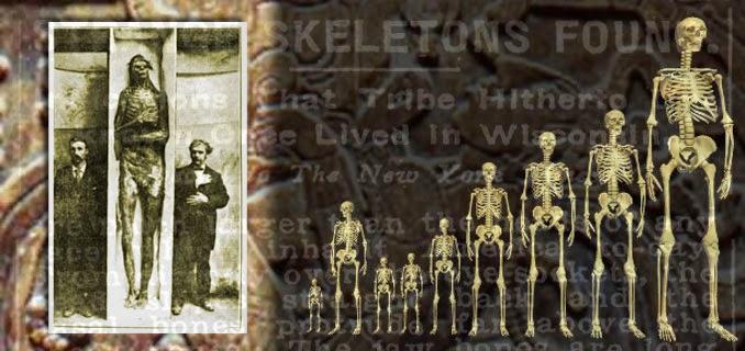 Los esqueletos de Gigantes: ¿Descubrimientos Encubiertos? (Video)