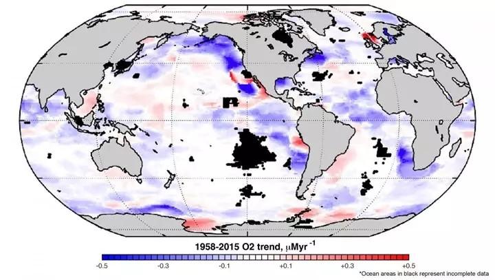 Declive acelerado del oxígeno en los océanos