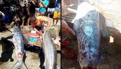 Pescadores de Filipinas pescan un extraño pez con extraños símbolos en el cuerpo