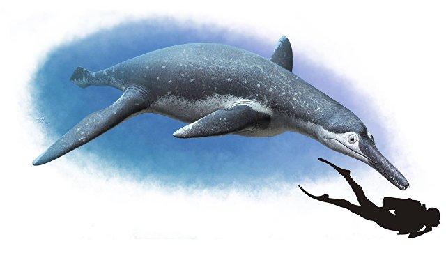 Descubren fósil de nuevo monstruo marino