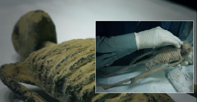 Investigación muestra que las momias de Nazca son de otro origen genético.
