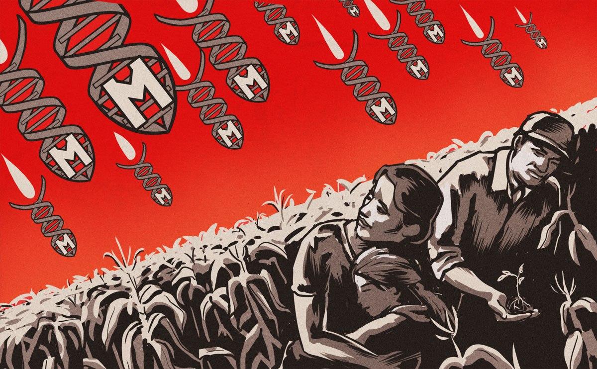 Efecto Monsanto: Para 2025 uno de cada dos niños estadounidenses podría ser autista