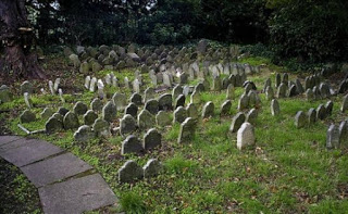 La bestia del cementerio.