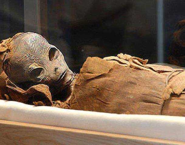 Alienigena hibernando descubierto el interior de la Cámara Secreta en la Gran Pirámide
