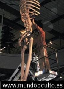 El misterio de los GIGANTES DE 7 METROS REALES de Ecuador expuestos en Mystery Park en suiza