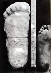 ¿De dónde proviene la historia de pie grande?